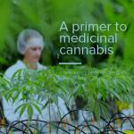Nieuwe brochure biedt informatie over medicinale cannabis