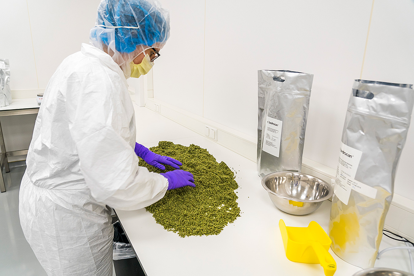 The Dutch OMC checks the medicinal cannabis at Bedrocan's facility